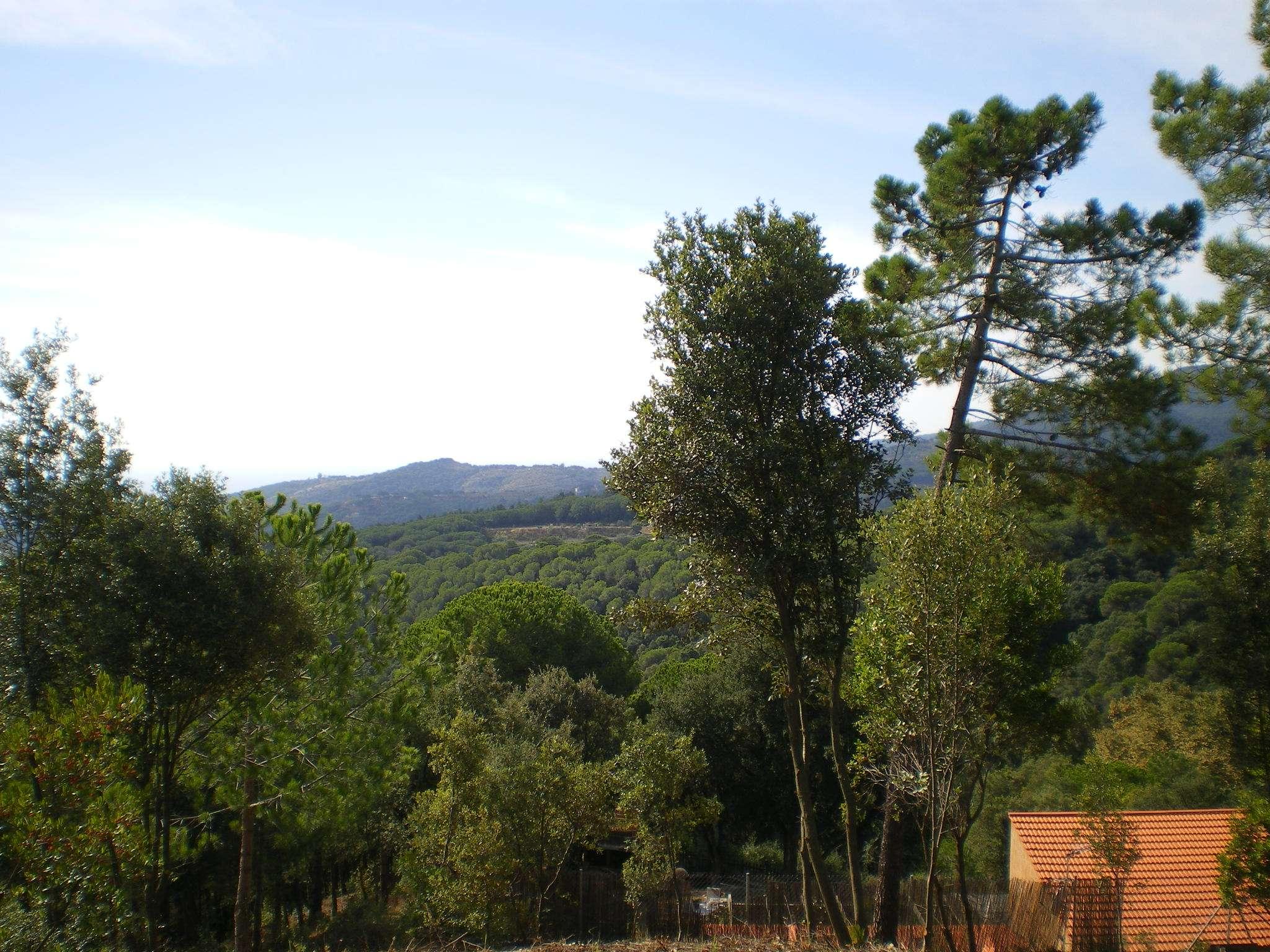 Участок в зоне Collsacreu, Arenys de Munt
